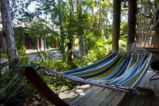 Aussie Woolshed Backpackers Hervey Bay, Fraser Island: Relax in the hammocks strung around our gorgeous gardens