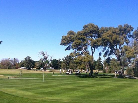 Yuma Golf & Country Club: Green and inviting!
