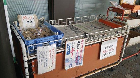 Toyosaka Michi-no-Eki: えさを販売中