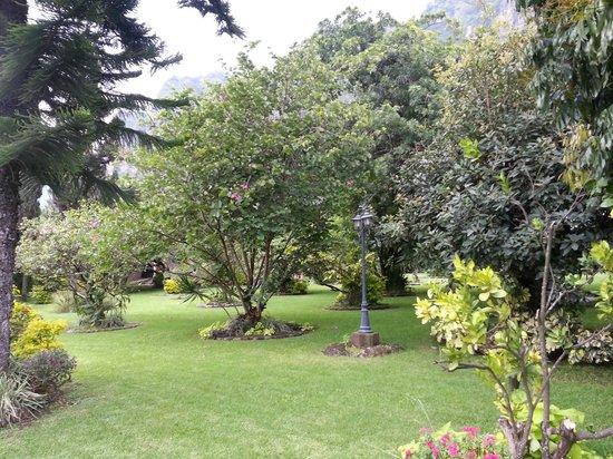 La Buena Vibra Retreat & Spa: Jardines