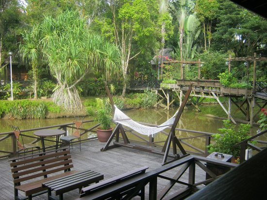 Sepilok Nature Resort: view from restaurant