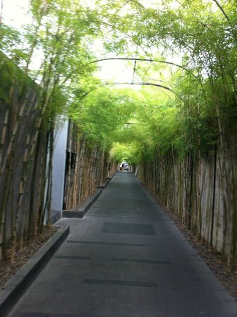 The Jineng Villas: a bit of a walk to the reception/lobby