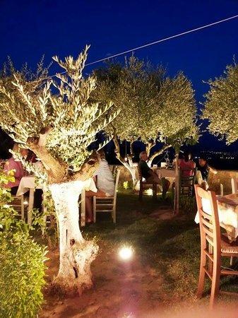 Taverna The Garden: Il ristorante