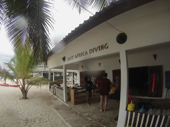 East Africa Diving Centre: diving