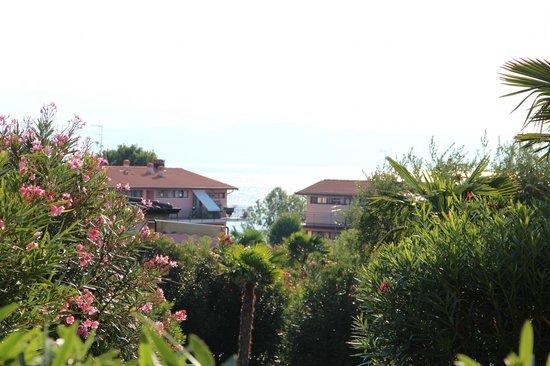 Residence Apparthotel San Sivino: Garden