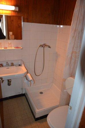 Hotel Mont-Brison : Bagno