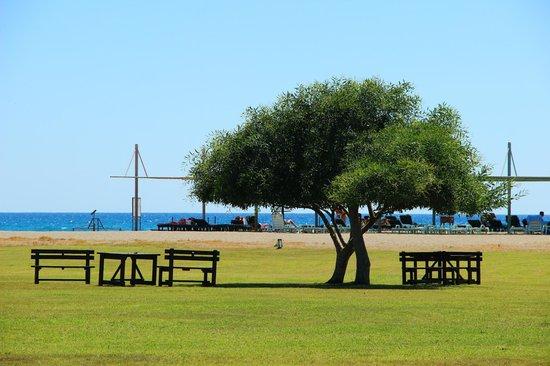 Club Hotel Felicia Village: Seaview from the garden