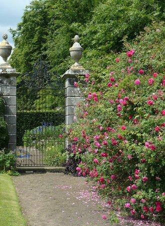 Kinross House Gardens