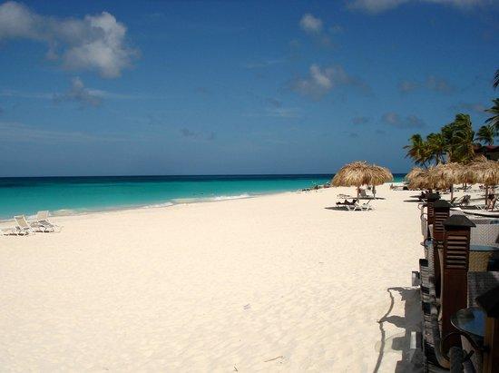 Divi picture of divi aruba all inclusive oranjestad - Divi aruba all inclusive resort ...