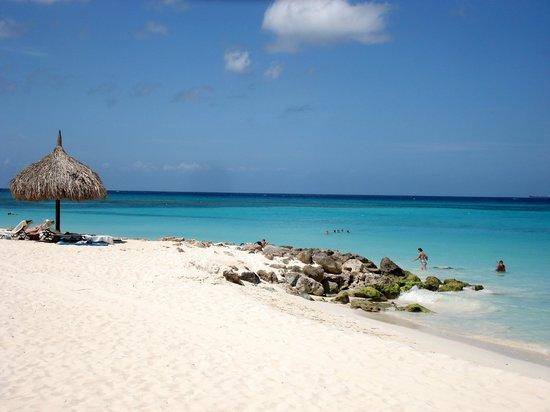 Beach area picture of divi aruba all inclusive - Divi aruba all inclusive resort ...