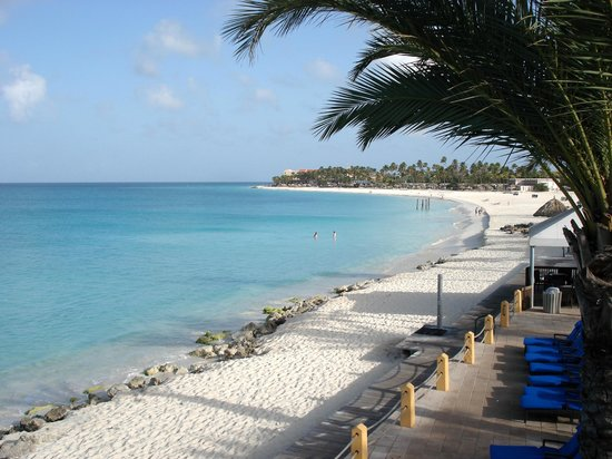 Divi picture of divi aruba all inclusive oranjestad tripadvisor - Divi aruba all inclusive ...