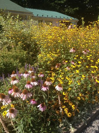 The Woodstock Inn on the Millstream : Beautiful gardens