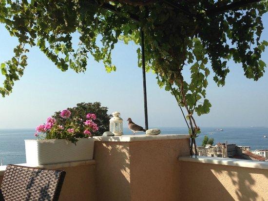 Hotel Buhara Family Inn: terrazza