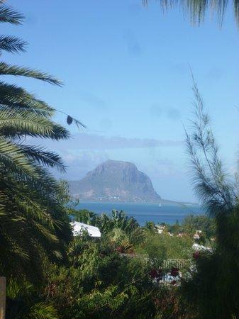 Terre et Mer Studios - Mauritius: Le Grand Morne vu depuis le studio Le Marlin Bleu