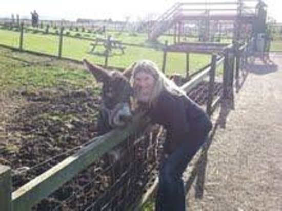 Fife Animal Park: me and one of the donkeys