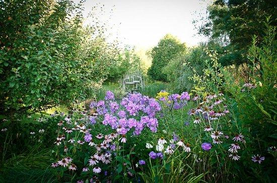 Au Gite du Cerf Argente : The mystical Garden 2