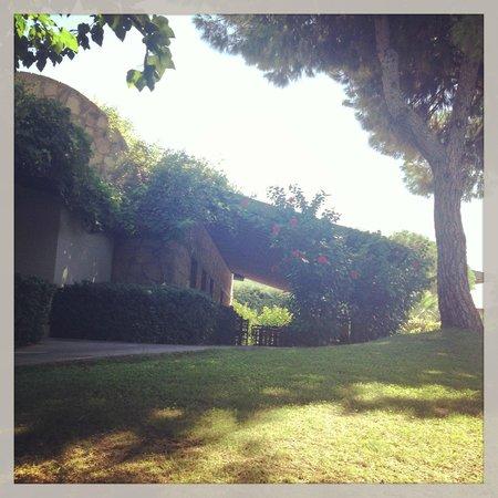 Gloria Verde Resort: Basilika