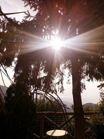 Agrituristica La Ginestra: O qui ?