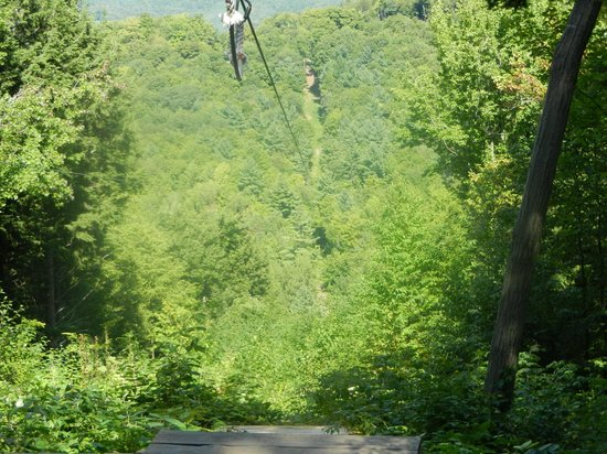 Berkshire East Canopy Tours: They saved the best for last! It was like soaring eagles!