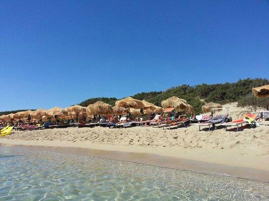 Samana Bed : Spiaggia del Samanà Beach