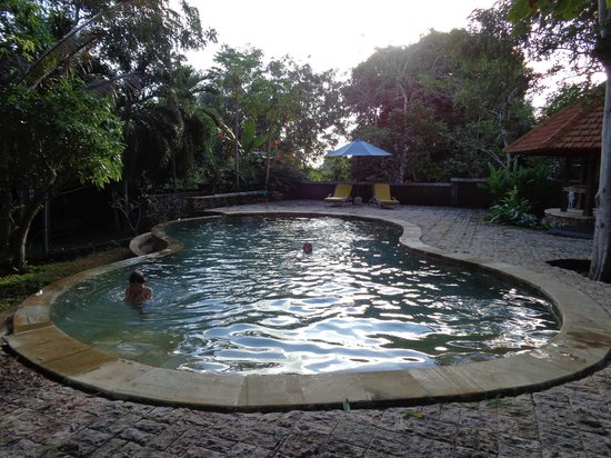 Exclusive Bali Bungalows: Beautiful pool.
