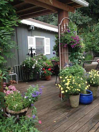 Birdwood Inn: Cottage backyard