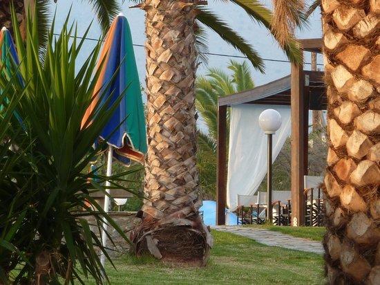 Ermioni Beach Hotel : Garten Ermioni Hotel