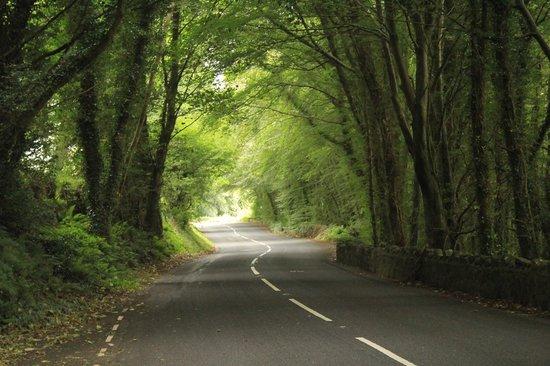 Bushmills, UK: die wundervollen glens