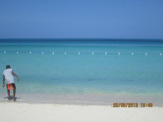 Bar-B-Barn: beach