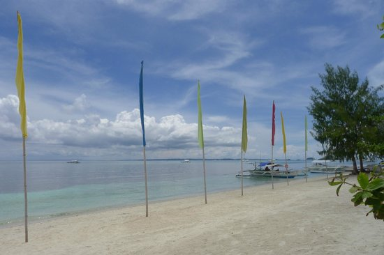 Malapascua Legend : View of Bounty Beach, just in front of Legends