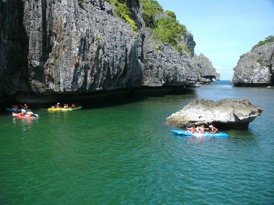 Blue Stars Kayaking: Let'so go to Kayaking