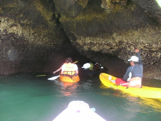 Blue Stars Kayaking: Kayaking