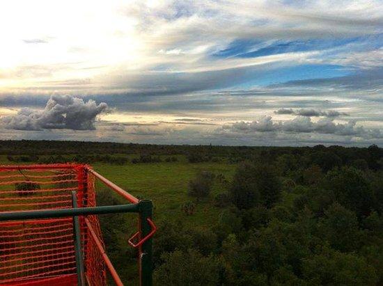 Zip Orlando: Beautiful view!