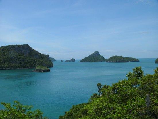 Blue Stars Kayaking: View Point