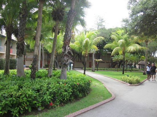 Sunscape Curacao Resort Spa & Casino: Lovely gardens and walkways