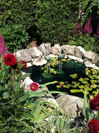 Beautiful Pond at the Metivier Inn