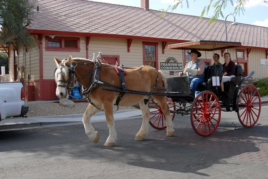 Lazy D Rockin P Ranch Carriage Rides - Tours: You will learn the history of Wickenburg, AZ
