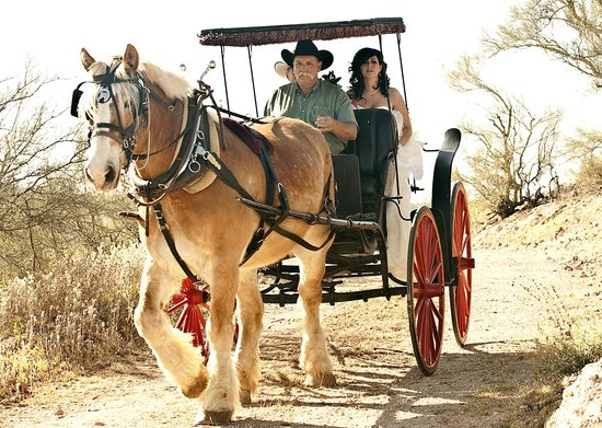 Lazy D Rockin P Ranch Carriage Rides - Tours: They are available for weddings too