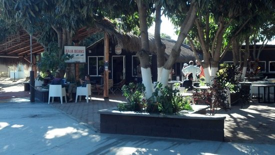 Baja Beans Cafe Pescadero : Loved Baja Beans Coffee...