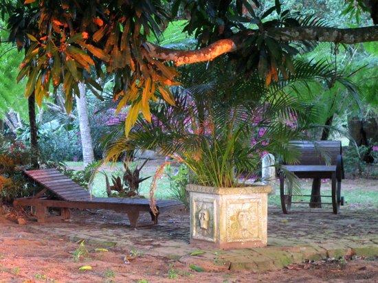 Kingfisher Lodge: jardin