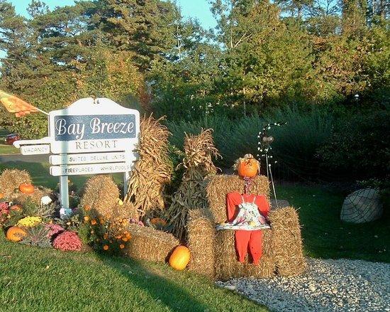 Bay Breeze Resort: Fall greeting