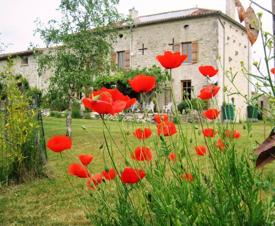 Crezieres, Γαλλία: View from garden of holiday accommodation, Les Hiboux