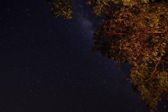 Chundu Island Camp: Night sky at Chundu
