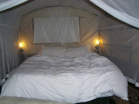 Oxwagon Lodge: Unique sleeping experience