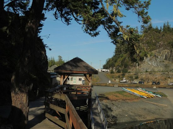 Telegraph Cove Marina & RV Park : Take a walk along our boardwalk.