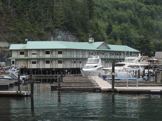Telegraph Cove Marina & RV Park : Dockside 29 units and marina.