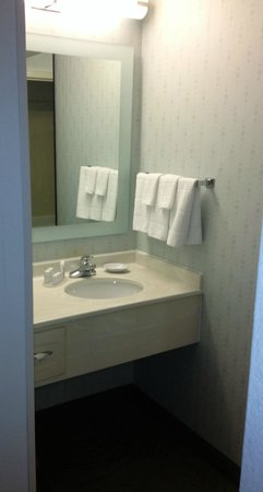 SpringHill Suites Chicago Schaumburg/Woodfield Mall : Basic, little counter space, separate from tub/toilet room