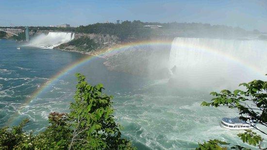 Niagara Falls Day Tour : regenboog