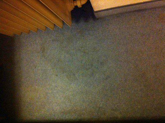 Smart Stay Hotel Schweiz : Very dirty carpet