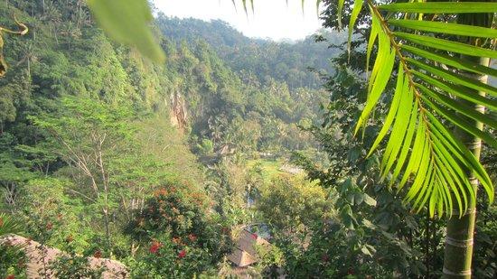 The Royal Pita Maha: paesaggio